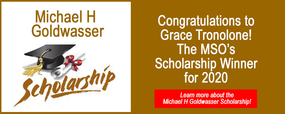 Michael H Goldwasser Scholarship Winner 2020